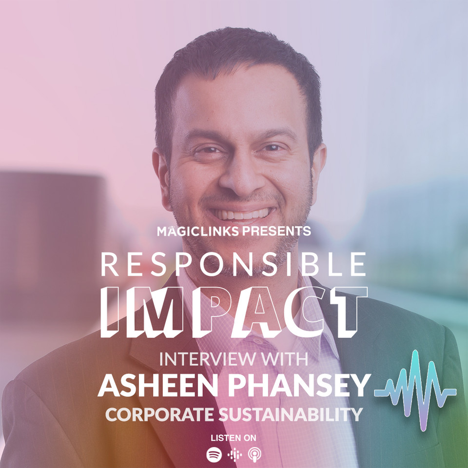 104: CORPORATIONS AND SUSTAINABILITY - Asheen Phansey